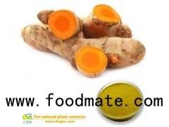 Pure organic air driedTurmeric Curcuma Longa Extract