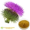 SHANGHAI CBAGRO CO.,LTD Factory Bulk Supply Natural Milk Thistle Seed Oil