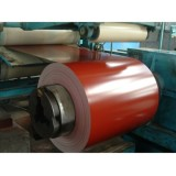 Prepainted Galvanized Steel Coil For Cold Storage And Suspended Ceiling