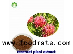 rhodiola roanensis extract increasing body's resistance