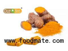 CurQfen® - Curcumin Supplement