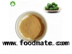 monk fruit herb extract