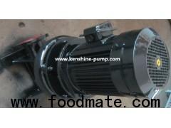 LW,WL Vertical sewage pump for waste water