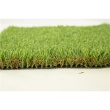 C Turf Type Artificial Turf Landscaping
