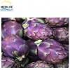 Violet Artichoke, Mediterranean Fresh Artichoke , New Harvest 2019