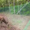 Plastic Mesh Deer Fence
